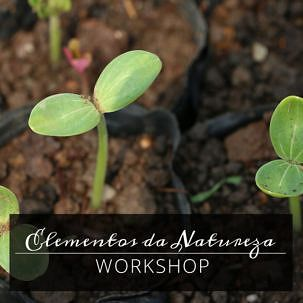 Workshop Elementos da Natureza